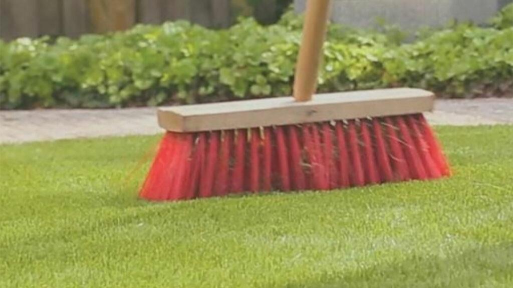 Maintenance Artificial Grass 2